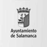Idimad 360 Agencia de Marketing Digital y Tecnología Ayuntamiento de Salamanca