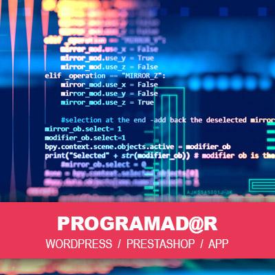 Idimad 360 Agencia de Marketing y Tecnologia en Salamanca - RRHH PROGRAMADOR