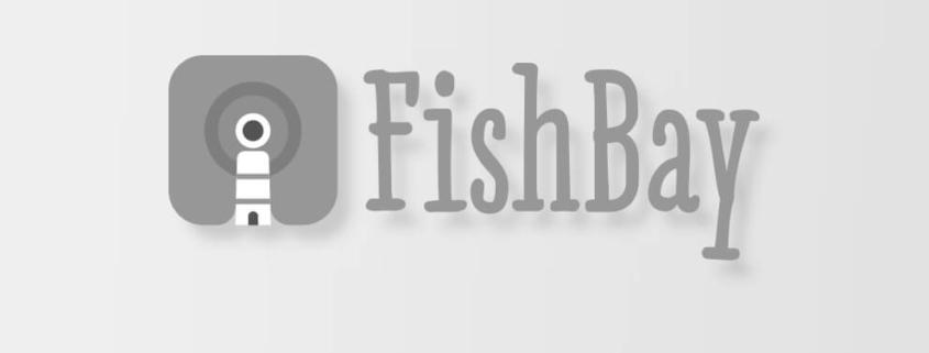 Idimad 360 Agencia de Marketing y Tecnología en Salamanca - FishBay 2 - Idimad 360