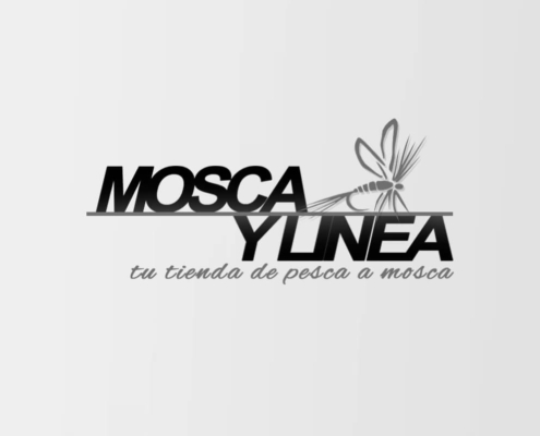 Idimad 360 Agencia de Marketing y Tecnología en Salamanca Mosca y linea 2